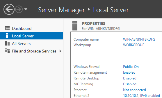 Windows Server Manager Host Info
