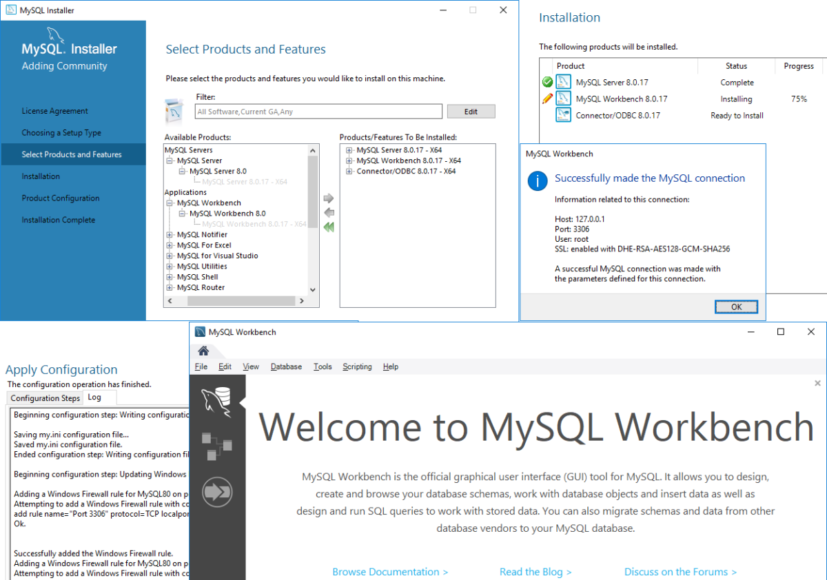 Installing MySQL 8.0 on Windows